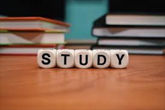 STUDYというサイコロ